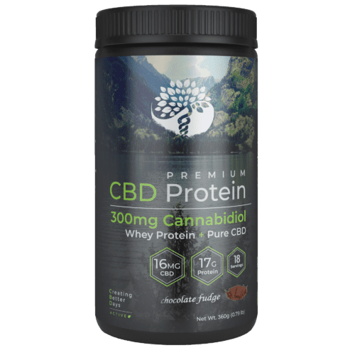 Chocolate CBD Whey Protein